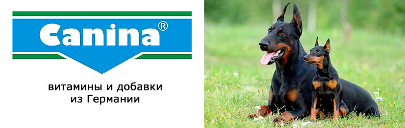 http://pardi.ru/data/images/banner_789x250_canina.jpg
