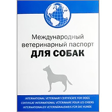http://pardi.ru/data/medium/vet-pas-cat-bl.jpg